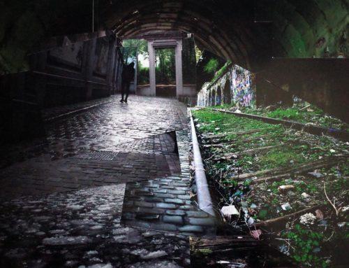 Fôret souterraine