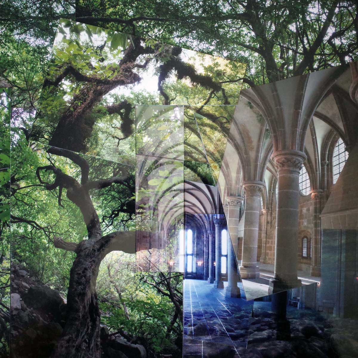 voute-forestiere-v2-empinsan-collage-photo