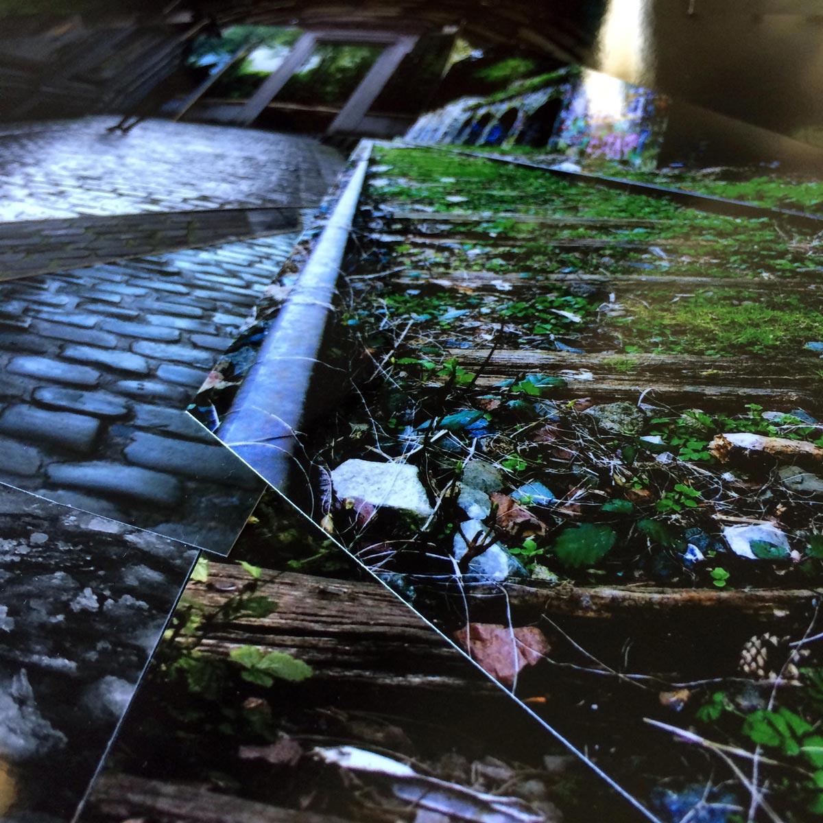 Forêt souterraine - EmPinsan- Collage