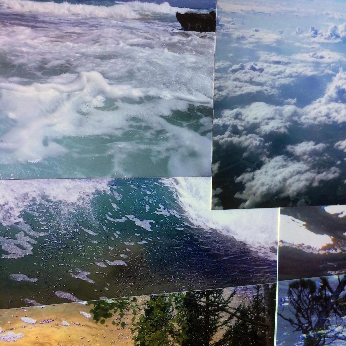 Foret-nuageuse - Em Pinsan
